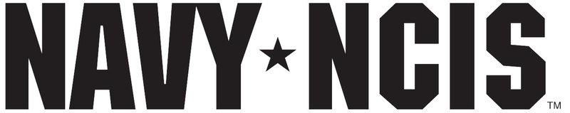 NAVY CIS - Originaltitel-Logo – Bild: Sat.1