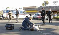Müssen einen neuen Mordfall aufklären: Gibbs (Mark Harmon, 2.v.r.), Ducky (David McCallum, 3.v.l.), Tony (Michael Weatherly, 2.v.r.) und McGee (Sean Murray, 2.v.l.) ... – Bild: CBS Television Lizenzbild frei