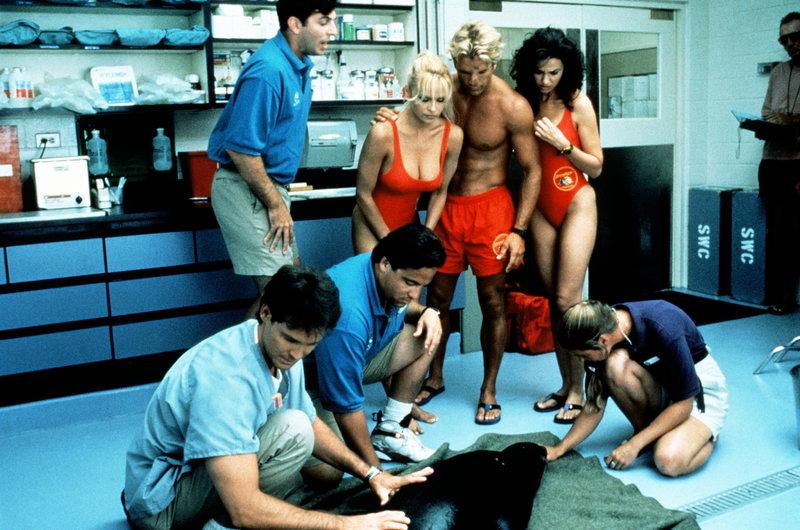 Die Rettungsschwimmer Sam (Nancy Valen, r.), Cody (David Chokachi) und C. J. (Pamela Anderson, M.) hoffen, dass der Tierarzt (Jay Baker, l.) dem angeschossenen Seelöwen helfen kann. – Bild: © Fremantle Media Enterprises Ltd 2002