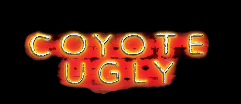 """Coyote Ugly"" – Bild: ProSieben Media AG © Touchstone Pictures"