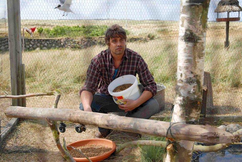 Georg (Raphaël Vogt) lebt sehr zurückgezogen in einem Haus am Meer und kümmert sich mit Hingabe um seine Vögel. – Bild: Puls 8