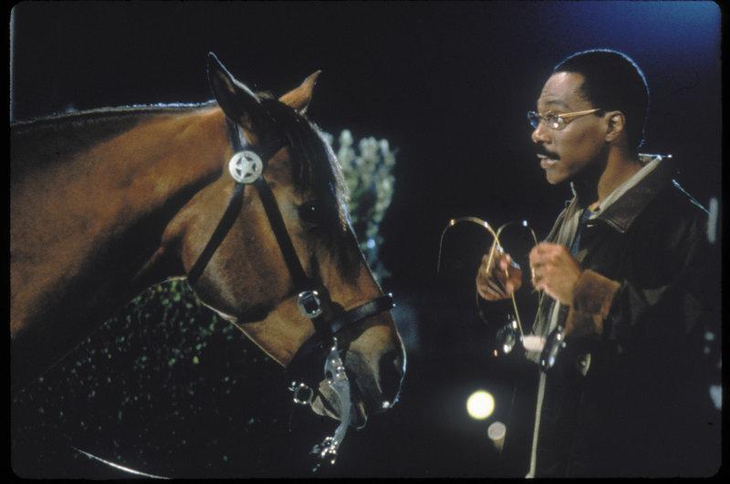 Der Freund der Tiere: Dr. Dolittle (Eddie Murphy) kann ihnen nicht nur medizinischen Beistand geben, sondern auch mit ihnen sprechen ... – Bild: Puls 8