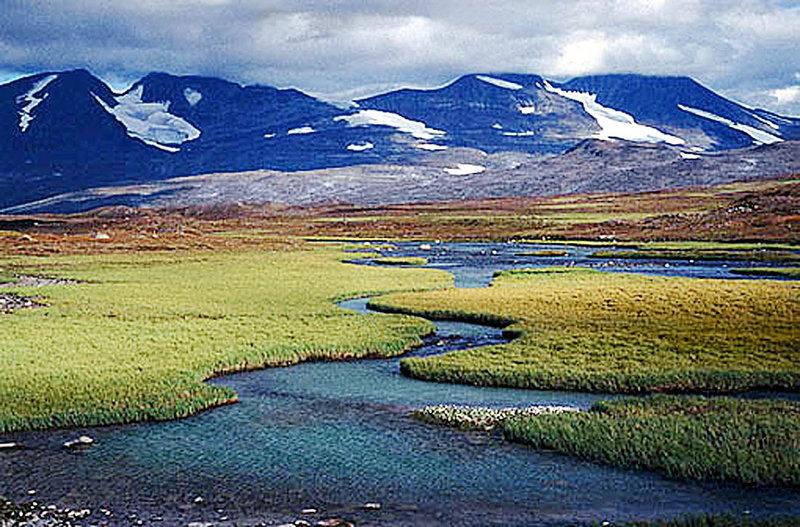 Öland – Blumenpracht auf kargem Felsen (Schweden) (Folge 313) – Bild: DMB
