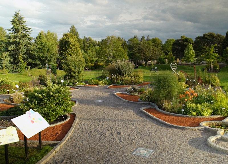 Dok Magische Gärten Schweden Gärten Von Linné Fernsehseriende
