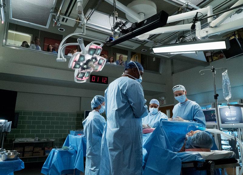 Greys Anatomy Staffel 14 Episodenguide Fernsehserien