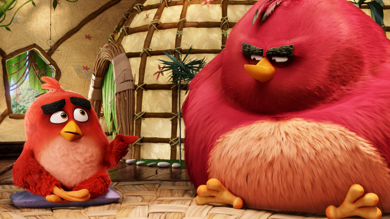 Angry Birds Gespräch in der Anti-Aggressions-Therapiegruppe SRF/2016 CTMG – Bild: SRF2