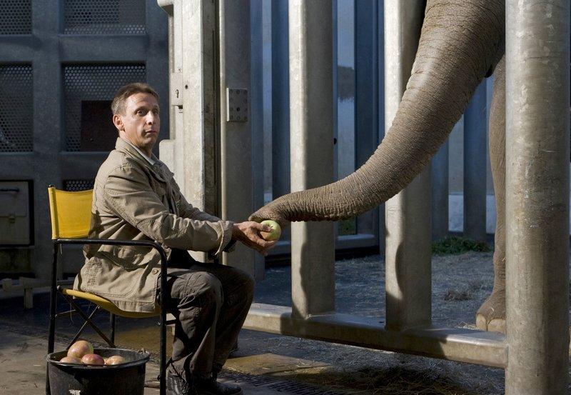 """NDR Fernsehen TIERÄRZTIN DR. MERTENS III. STAFFEL, FOLGE 29, """"Alt und Jung"""", am Dienstag (26.04.11) um 21:45 Uhr. Cheftierpfleger Conny (Thorsten Wolf) kümmert sich auch nachts hingebungsvoll um die kranke Elefantendame Don Chung. Ein Geräusch lässt ihn aufschrecken. – Bild: NDR/ARD/Olaf Raymond Benold"""