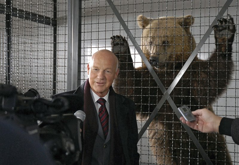 """NDR Fernsehen TIERÄRZTIN DR. MERTENS III. STAFFEL, FOLGE 32, """"Bärenjagd"""", am Dienstag (17.05.11) um 21:45 Uhr. Vor dem Bärenkäfig ist """"der Bär"""" los. Vor laufenden Kameras erklärt Staatssekretär Bredow (Dietrich Hollinderbäumer) der Presse stolz, dass es nur seinem Einsatz zu verdanken ist, dass der Braunbär nicht getötet, sondern gefangen und gesundgepflegt wurde. Er kann wieder ausgewildert werden. – Bild: NDR/ARD/Christa Köfer"""