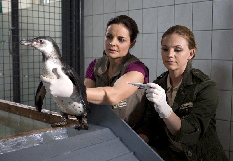 15 Uhr im Ersten. Susanne (Elisabeth Lanz, li.) und Anett (Anna Bertheau, re.) machen sich Sorgen. Dem Pinguinm%nnchen geht?s noch nicht besser. – Bild: rbb