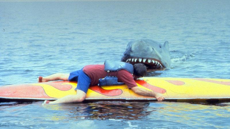 Sollte der große weiße Hai tatsächlich zurück gekommen sein..? – Bild: RTL II