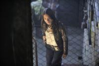 Catherine Chandler (Kristin Kreuk) ist Polizeibeamtin des Morddezernats in New York City, die immer noch unter dem Mord an ihrer Mutter vor neun Jahren leidet. Doch eines Tages macht sie eine Entdeckung, die sie der Aufklärung etwas näher bringt ... – © 2012 The CW Network, LLC. All rights reserved.