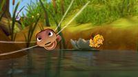 Wer hat beim Libellenrennen die Nase vorne? – © ZDF und Studio 100 Animation