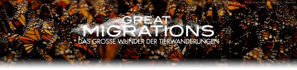 Great Migrations – Das große Wunder der Tierwanderungen