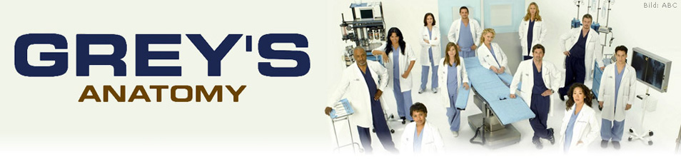 Grey\'s Anatomy Staffel 8 Episodenguide – fernsehserien.de