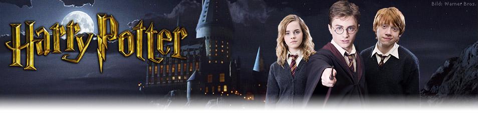 Harry Potter 08 Harry Potter Und Die Heiligtümer Des Todes Teil 2