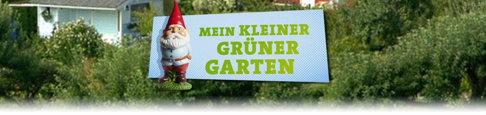 Mein kleiner grüner Garten