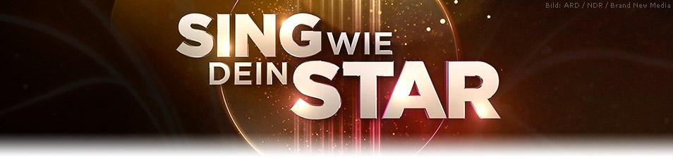 Sing wie dein Star