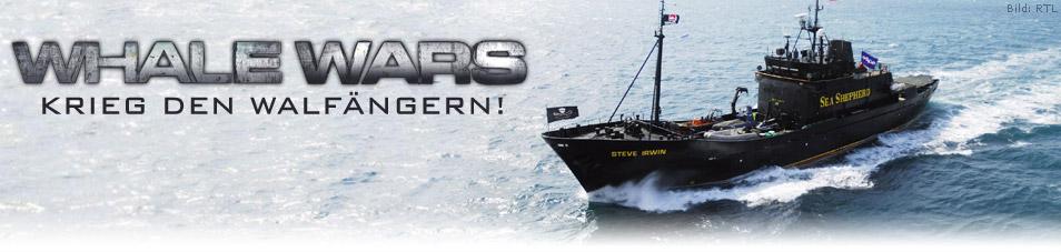 Whale Wars – Krieg den Walfängern!