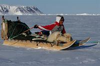Zusammen mit seinem Vater wird der zwölfjährige Qaaqqukannguaq zum ersten Mal eine mehrtägige Jagdreise mit dem Hundeschlitten durch die Eiswüste unternehmen. – Bild: ARTE / © MedienKontor/Vivien Vogel