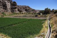 Seit Urzeiten bewässern die Atacameños ihre Felder über Kanalsysteme. – © ARTE / © MedienKontor/Carolin Reiter