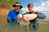Dr. Jamie Seymour und Simon mit Würfelqualle. Ihr Nesselgift gilt als das giftigste im gesamten Tierreich. – © ZDF und BBC