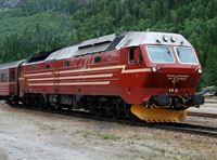 Fjorde, Gletscher, Eisenbahnen – Kreuzfahrt durch Norwegen (Folge 663) – © Südwest 3