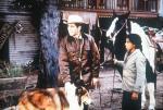 Lassie und ihr Freund Neeka (Folge 9) – © kabel eins Classics