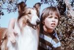 Unsere Lassie (Folge 9) – © kabel eins Classics