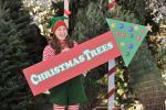 Das einfache Weihnachtsfest (Staffel 2, Folge 10) – © ORF eins