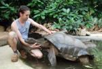 Figurprobleme bei Schildkröte Hanna (Staffel 2, Folge 15) – © Das Erste