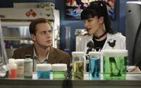 Ein Mörder muss gefasst werden: Abby (Pauley Perrette, r.) und McGee (Sean Murray, l.) bei ihren Ermittlungen ... – Bild: CBS Television