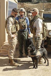 Marine Dex (Staffel 10, Folge 18) – © Sat.1