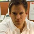 """Michael Weatherly gibt Regiedebut bei """"Navy CIS"""" – 'Tony' inszeniert im Januar eine Episode der achten Staffel – Bild: CBS"""