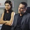 """""""Private Practice"""" befördert Brian Benben – Dr. Sheldon Wallis wird zu einer der Hauptfiguren – © ABC Television"""