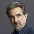 Joe Mantegna – Bild: © ABC Studios
