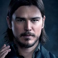 Josh Hartnett – Bild: Jim Fiscus/SHOWTIME
