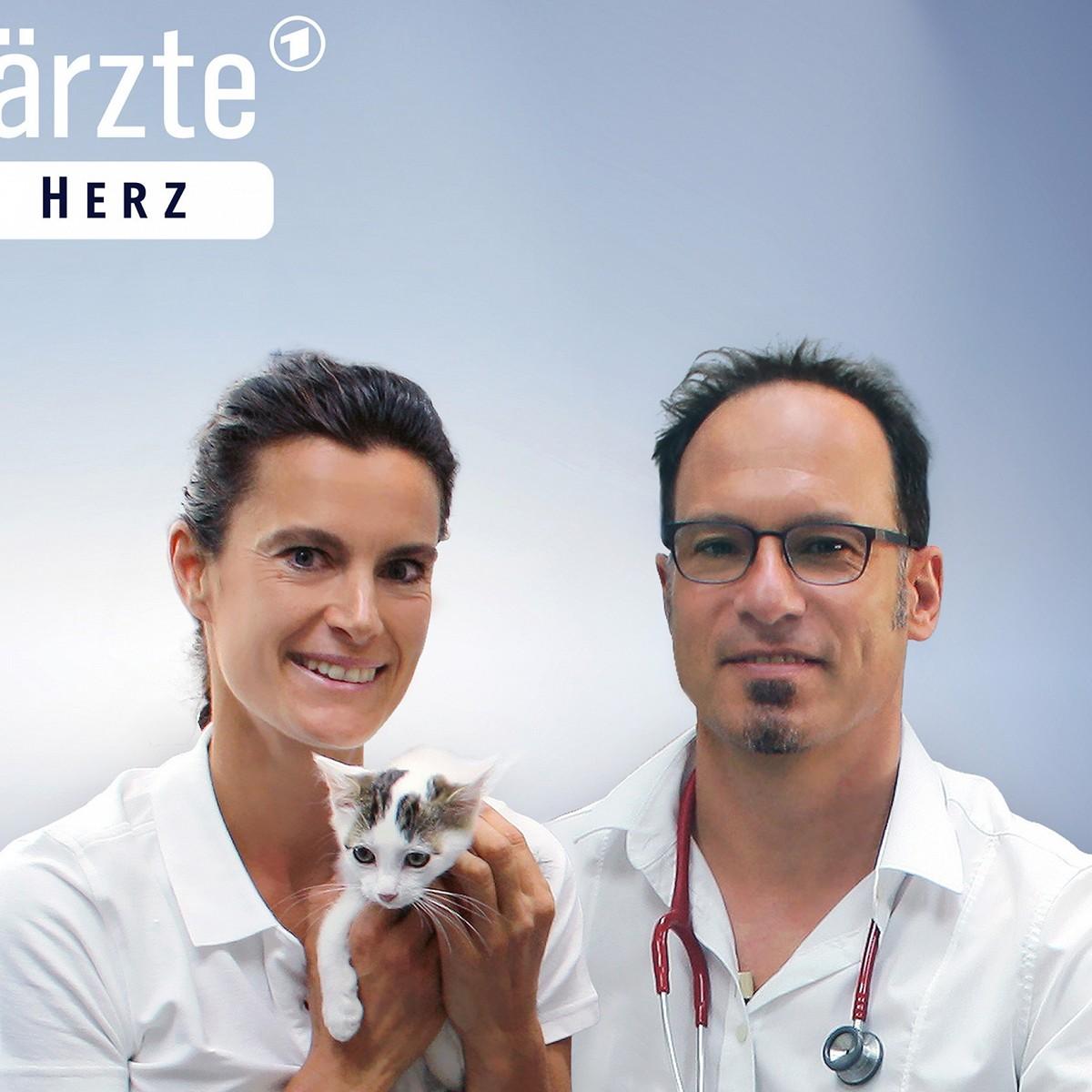 """Das Erste gibt den """"Tierärzten"""" eine zweite Chance – Neue Folgen der Nachmittagsdoku – Bild: NDR/Doclights"""