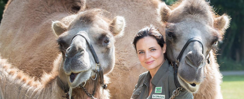 """Elisabeth Lanz ist """"Tierärztin Dr. Mertens"""" – Bild: ARD/Steffen Junghans"""