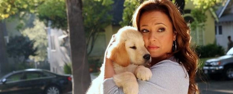 "Leah Remini in ""Family Tools"" – Bild: ABC"