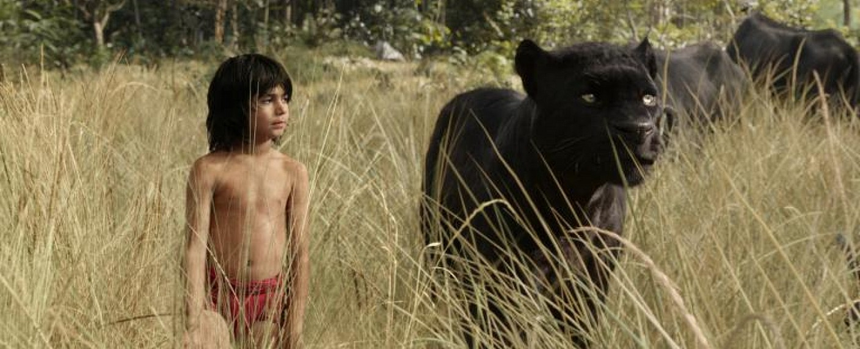 "Mogli (Neel Sethi) und Panther Baghira in ""The Jungle Book"" – Bild: © Disney Enterprises, Inc. All Rights Reserved."
