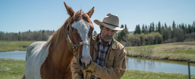 """Shaun Johnston als Jack Bartlett in """"Heartland – Paradies für Pferde"""" – Bild: Rescued Horse Season Nine Inc."""