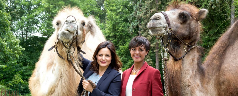 """""""Tierärztin Dr. Mertens"""": Susanne Mertens (Elisabeth Lanz, l.) mit der neuen Zoodirektorin Dr. Amal Bekele (Dennenesch Zoudé, r.) – Bild: ARD/Steffen Junghans"""