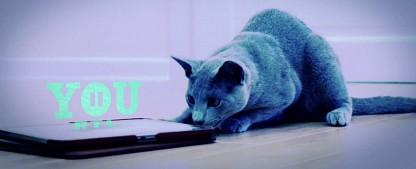 RTL II YOU hat den Sendebetrieb aufgenommen – Animes, Rocket Beans, YouTuber und Scripted Reality-Archivware – Bild: RTL II You
