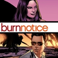 """Burn Notice"" als interaktiver Graphic Novel – Zwölf Kapitel ""A New Day"", ab sofort auf der USA-Website – Bild: USA Networks"