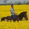 """Wayne Carpendale ist """"Der Landarzt"""" – Bild: ZDF/Christine Schroeder"""