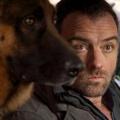"""ORF holt """"Kommissar Rex"""" zurück auf den Bildschirm – Drehstart für Special mit altgedientem Polizeihund – Bild: ORF/Beta Film"""