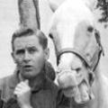 """""""Mr. Ed"""" spricht bald im Kino: Echtes Pferd mit künstlichem Gebiss – Studio Fox 2000 sichert sich die Filmrechte – © CBS"""
