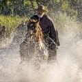 """""""Godless"""": Netflix veröffentlicht ersten Trailer zur Westernserie – Jeff Daniels und Michelle Dockery in Steven-Soderbergh-Serie – Bild: Ursula Coyote/Netflix"""