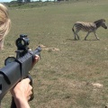 """""""Am Kap der wilden Tiere"""": Das Erste zeigt Tier-Doku-Soap – Deutsche Tierschützer lernen und wirken in Südafrika – © NDR/Vincent TV GmbH"""