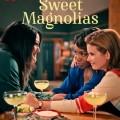 """Netflix: """"Süße Magnolien"""" verlängert, """"Baby""""-Finale angeteast, """"(un)gesund"""" vorgestellt – Neuigkeiten zu drei Formaten des Streaming-Dienstes – © Netflix"""